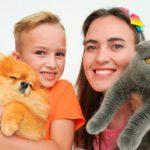 Vlad et sa mère ont échangé des animaux de compagnie (chats et chiens)