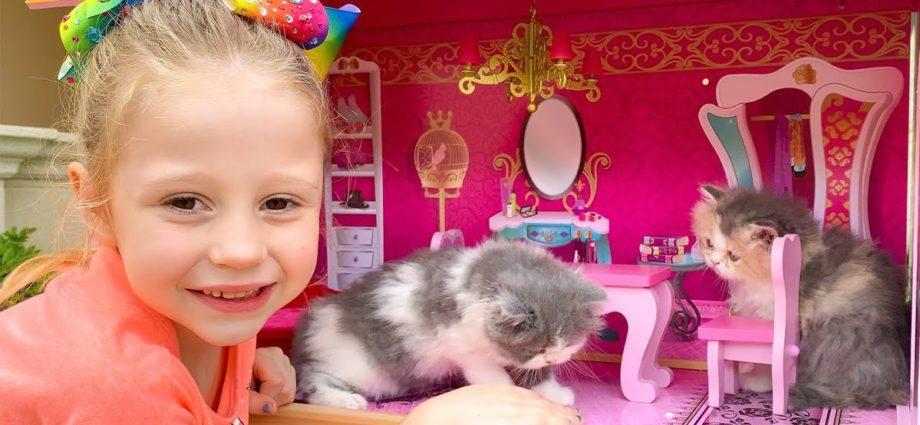 Nastya et le chat - histoires de chatons
