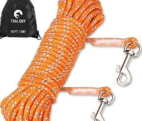 Taglory Laisse de Dressage de Chien de 5m, Long Corde en Nylon avec 2 Mousquetons pour Petits Chiens Chats, Jouer Camping Jardin, Orange