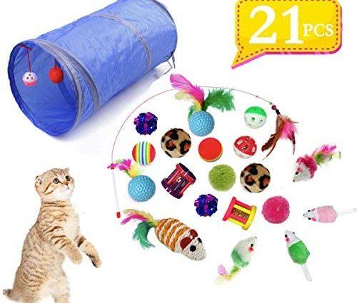 QIMMU Jouets Chat, Kit Jouet Chats, Jouet pour Chat Animaux Domestiques Toys pour Chat Chaton Minou, Jouet De Boule De Chat Tunnel Chat Jeu pour Chaton 21 pièces