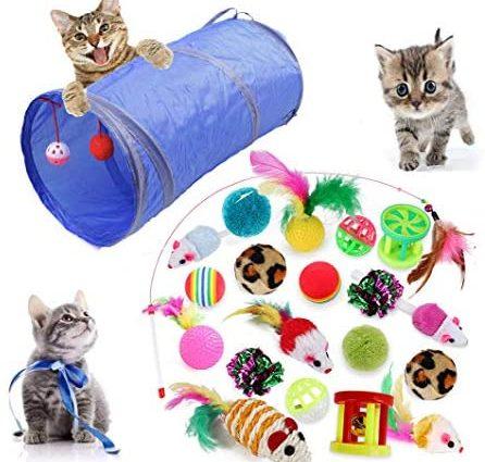MQIAN 21 pièces Jouets Chat, Jouet pour Chat Animaux Domestiques Toys pour Chat Chaton Minou, Jouet De Boule De Chat Tunnel Chat Jeu pour Chaton