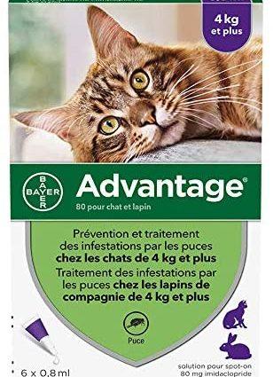 ADVANTAGE Chat – Anti-Puces pour Chats – 4KG Et