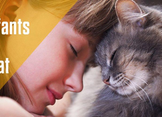 Pourquoi les enfants aiment tant les chats