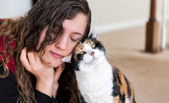 Le cat-sitting : faites garder votre chat à votre domicile